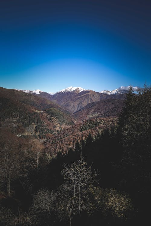 Landscape of rocky mountains with snowy tops and evergreen and deciduous forest under blue sky