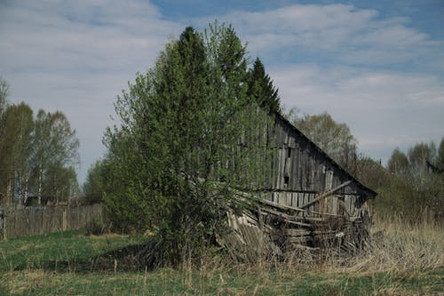Abandoned construction among green trees in countryside