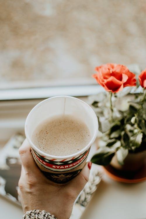 Kostenloses Stock Foto zu blume, dämmerung, espresso, essen