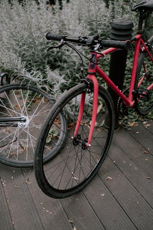 Red and Black Road Bike on Brown Wooden Floor