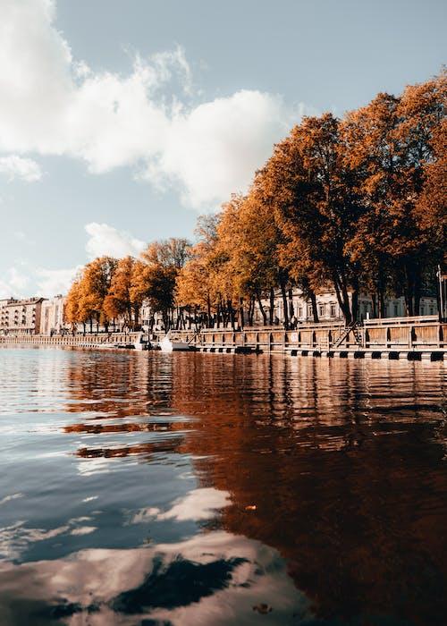 Бесплатное стоковое фото с atmosfera de outono, lietuva, апельсин, вода