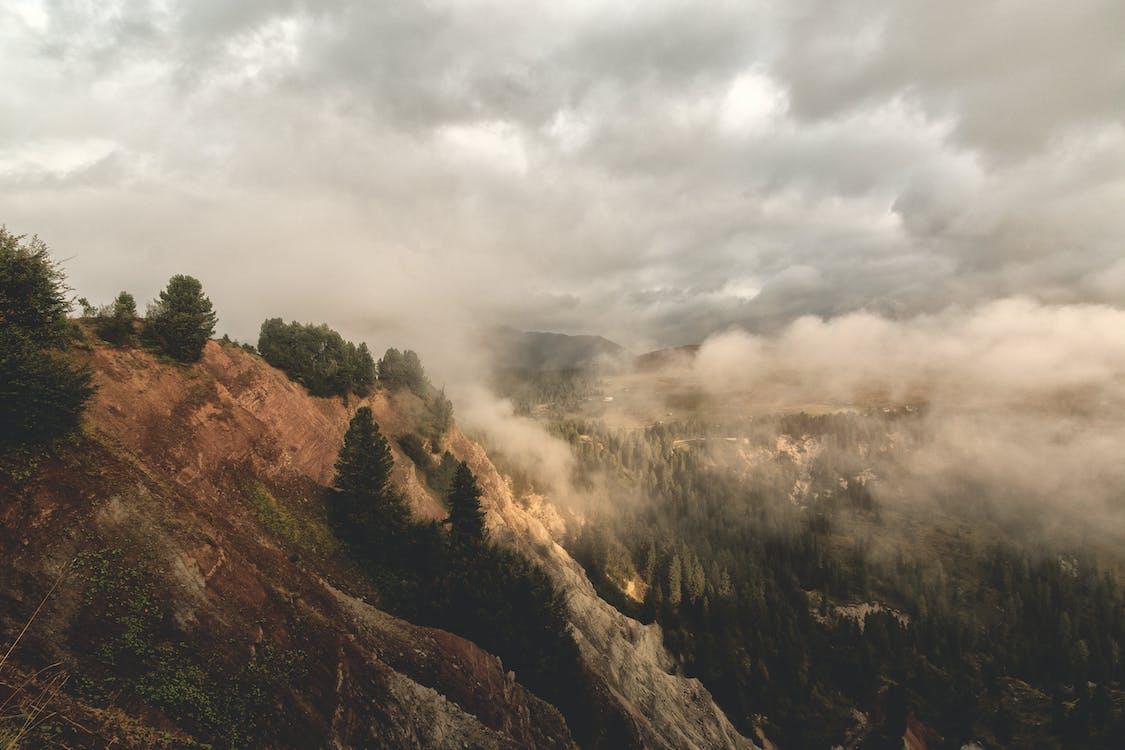 구름, 나무, 산