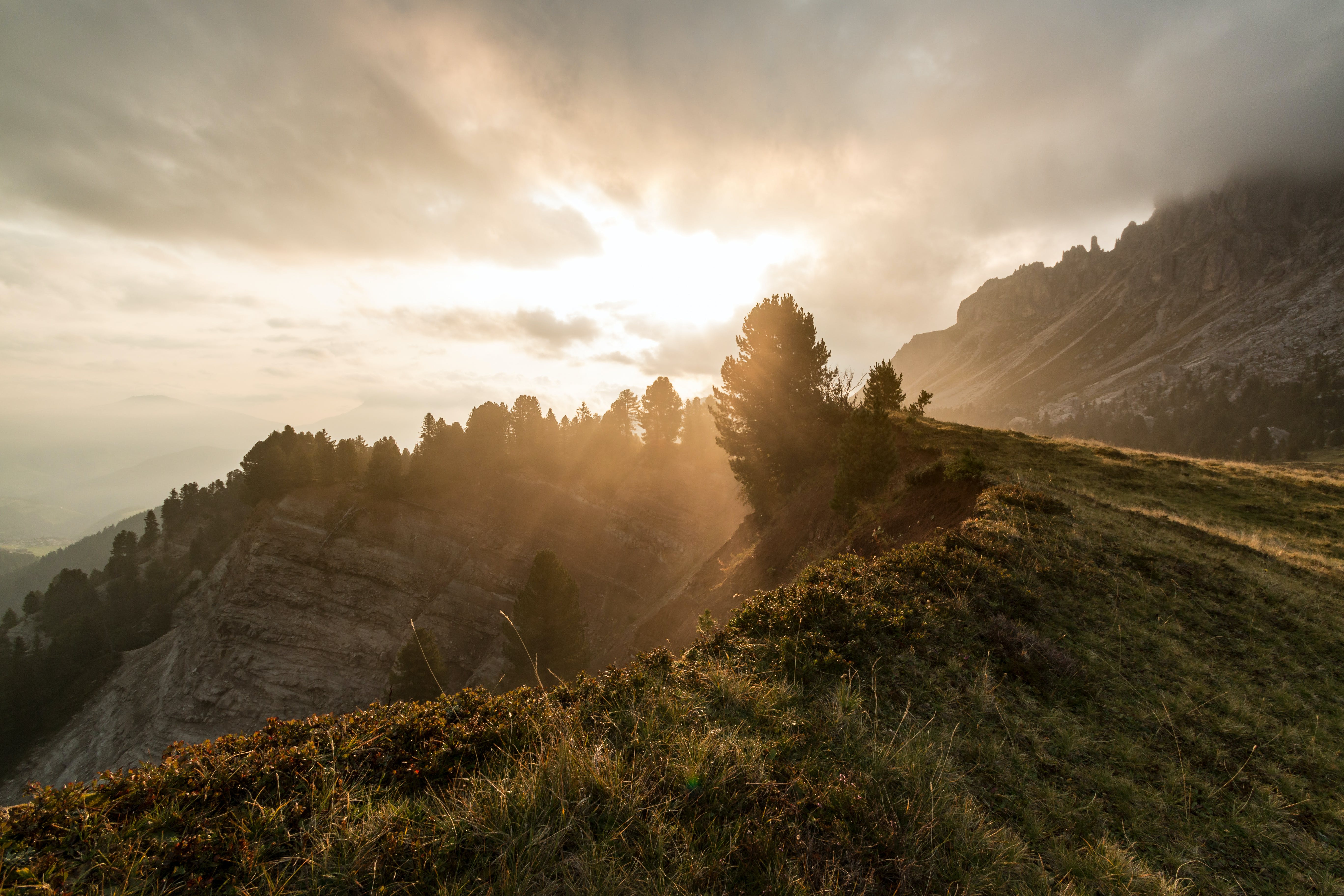Gratis stockfoto met berg, bewolkt, Bos, bossen