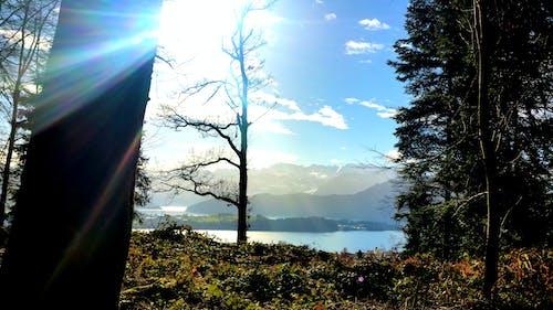 Ảnh lưu trữ miễn phí về núi, phong cảnh