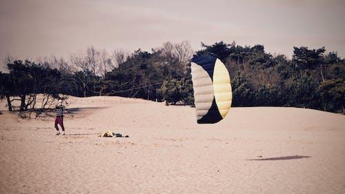 คลังภาพถ่ายฟรี ของ การบิน, คน, ต้นไม้, ทราย