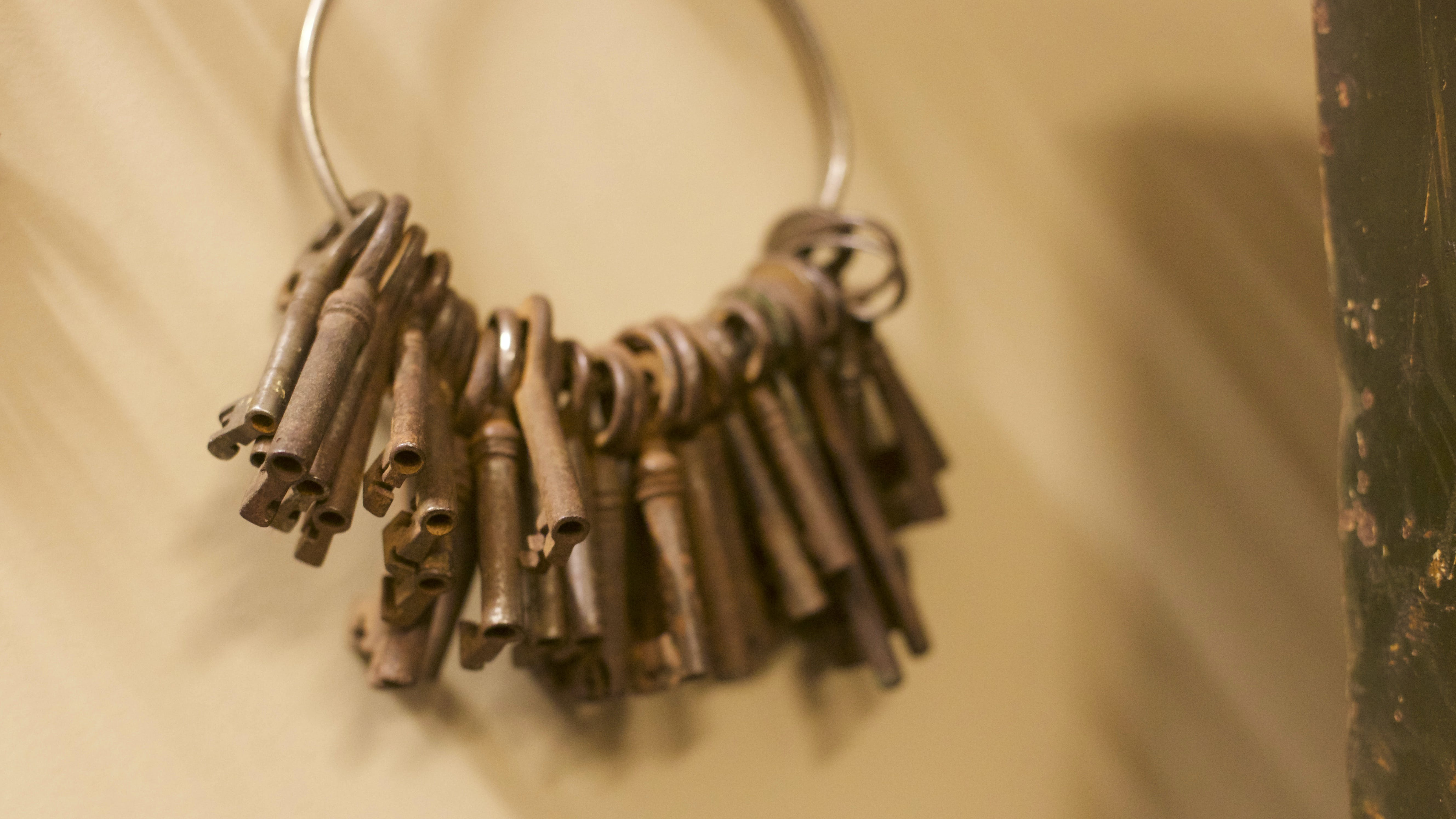 Foto profissional grátis de braun, chaves, foto antiga, matthiaszomer.com
