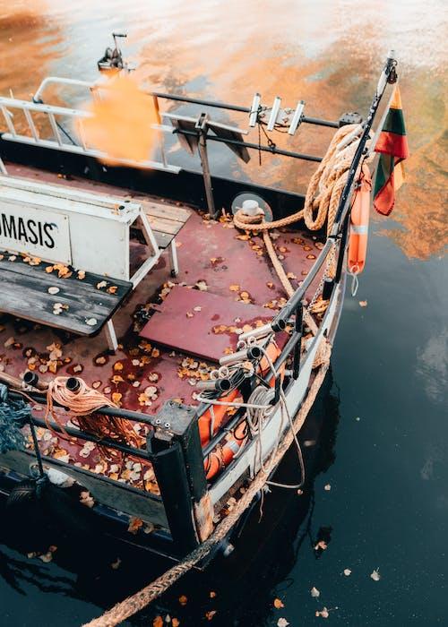 Бесплатное стоковое фото с atmosfera de outono, апельсин, вода, клайпеда