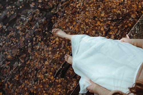 Photos gratuites de adulte, automne, beau