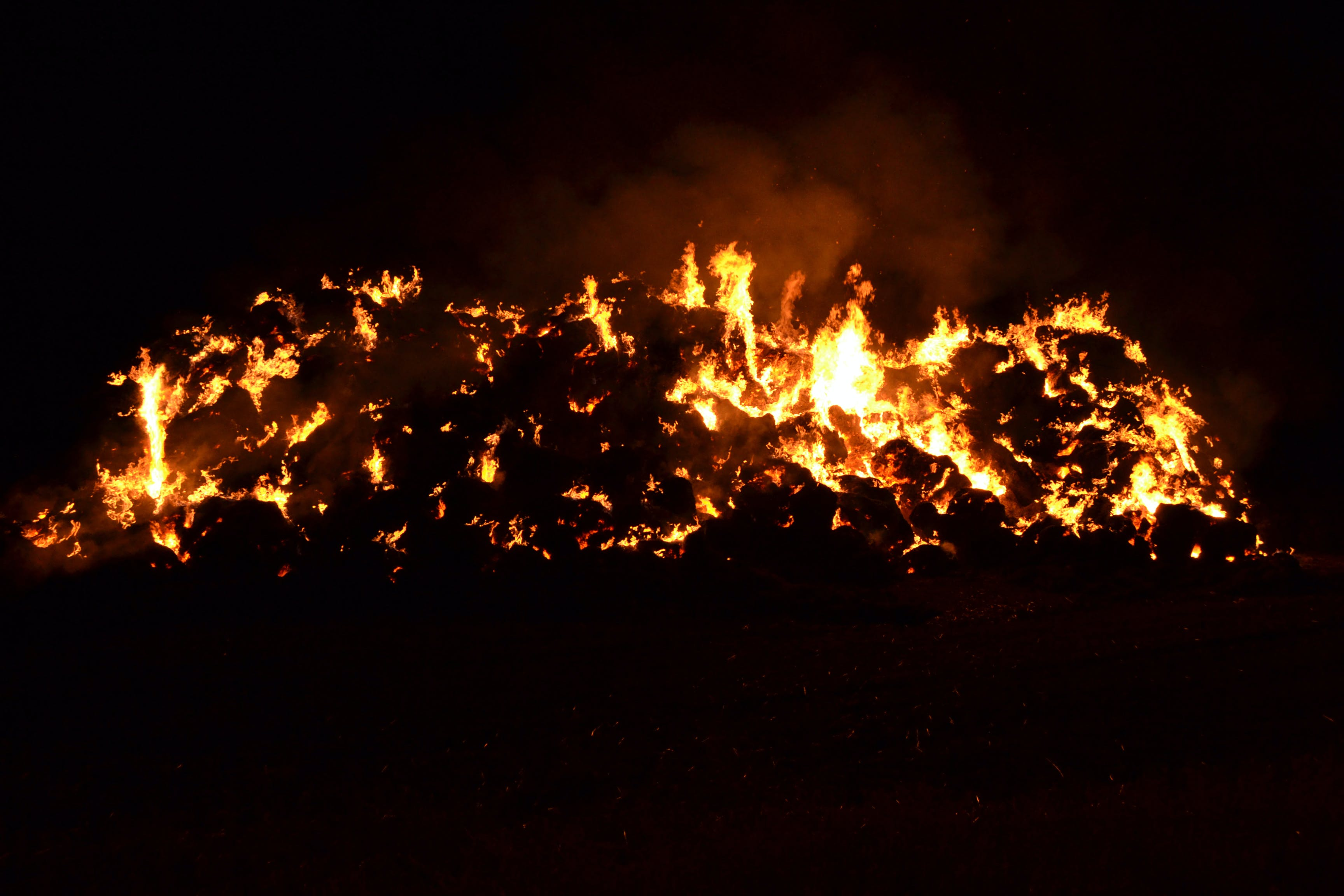 Free stock photo of incendie foin.