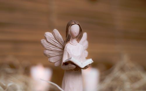 Foto stok gratis Alkitab, Allah, artikel, bacaan alkitab