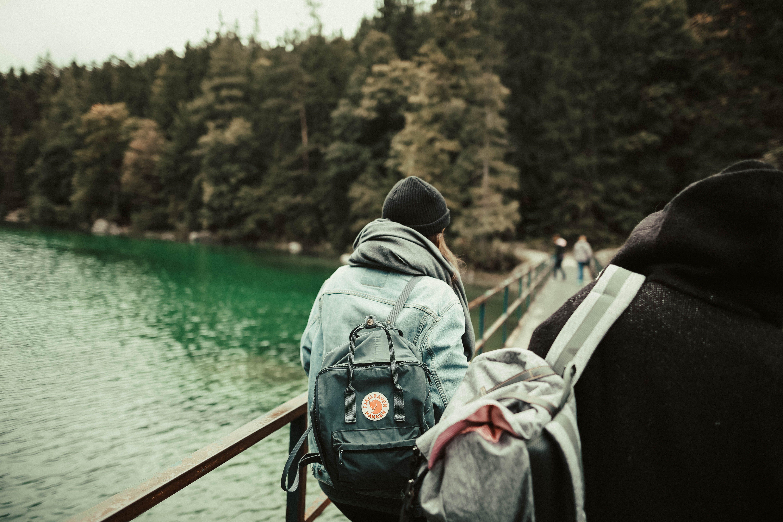 Základová fotografie zdarma na téma batoh, batůžkář, borovice, čepka