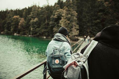 Fotobanka sbezplatnými fotkami na tému batoh, batôžkar, borovice, chladný