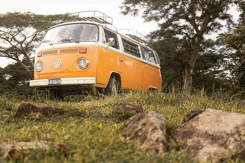 Photos gratuites de abandonné, arbre, autobus
