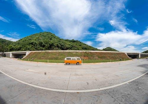 Photos gratuites de arbre, asphalte, autoroute