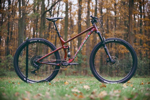 Red and Black Mountain Bike on Green Grass Field