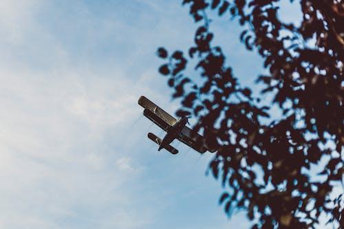 Gratis stockfoto met groen, hemel, lucht, vliegtuig