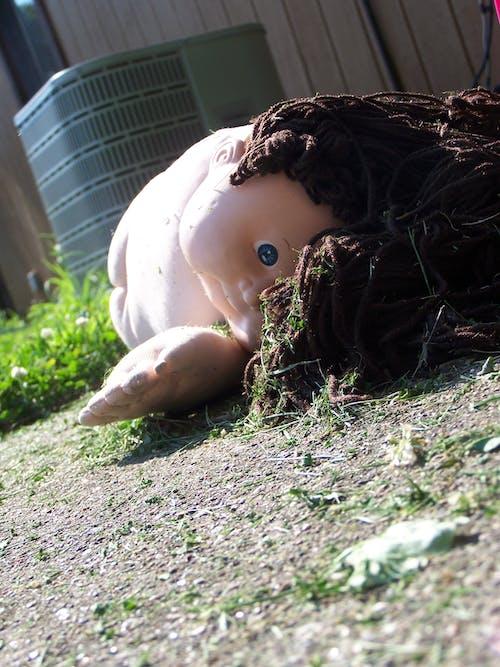 뒤뜰, 양배추 조각, 어린 시절, 인형의 무료 스톡 사진