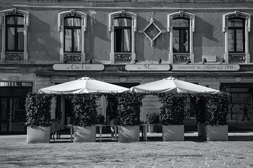 Black and white facade of aged building with street cafe with umbrellas and plants in pots near tables with chairs in sunny day in city