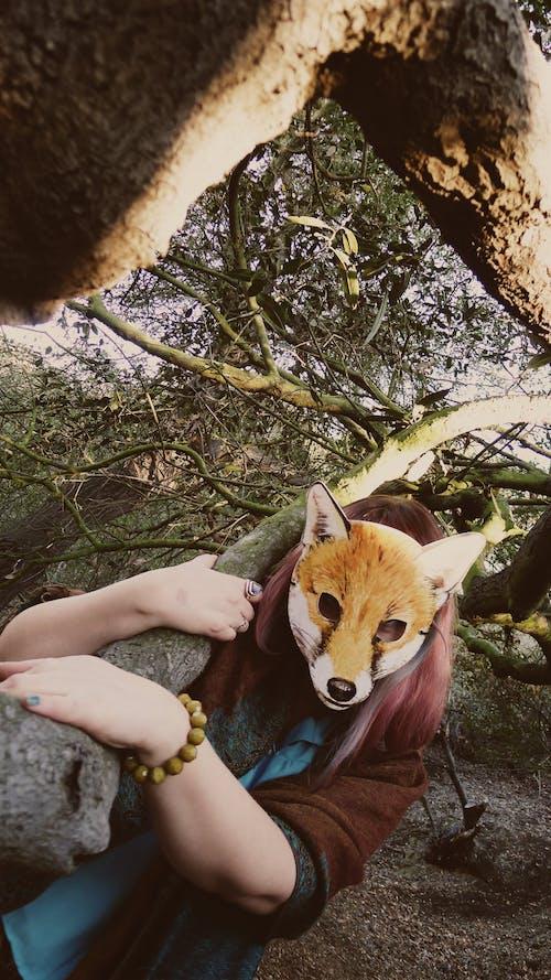 나무, 마스크, 여우의 무료 스톡 사진