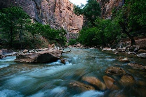 Бесплатное стоковое фото с вода, водопад, гора, деревья