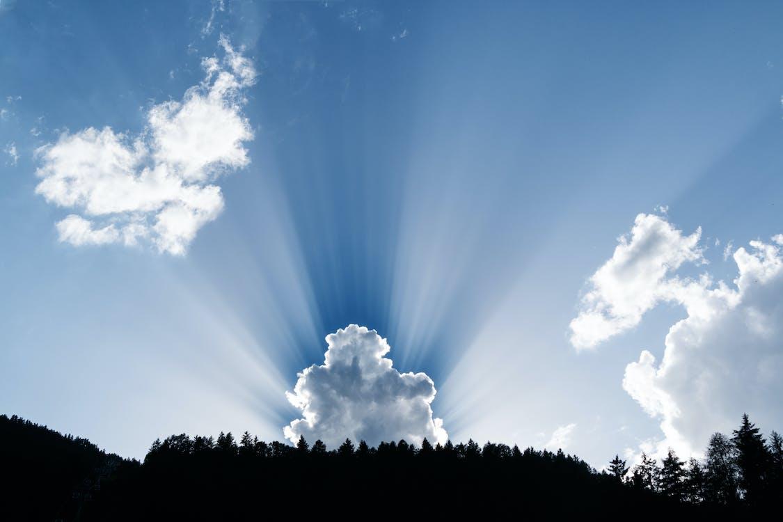 békés, fák, felhők