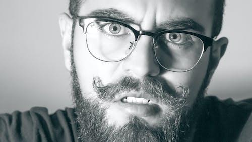 Immagine gratuita di adulto, alla ricerca, baffi, bianco e nero