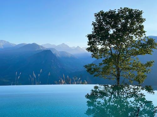คลังภาพถ่ายฟรี ของ พูล, ภูเขาสีน้ำเงิน, สระว่ายน้ำ, เวียดนาม