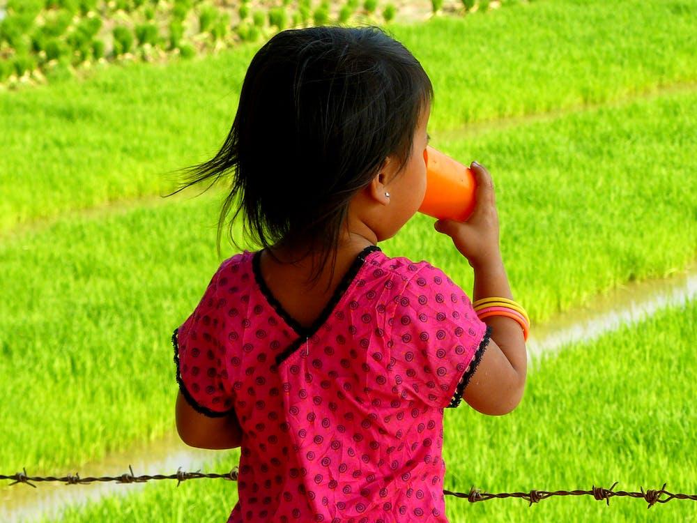 Free stock photo of asia, child, drinking