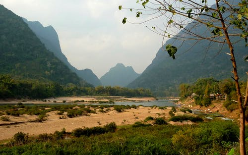 Free stock photo of asia, jungle, laos