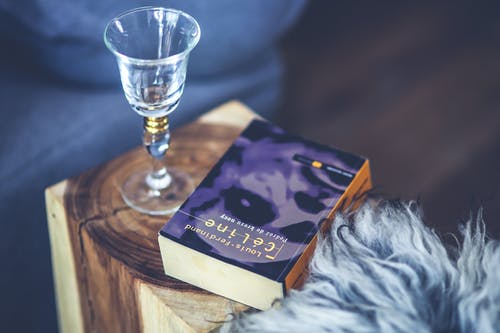 Wine glass & book