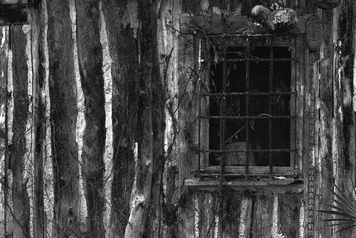 Free stock photo of wooden window