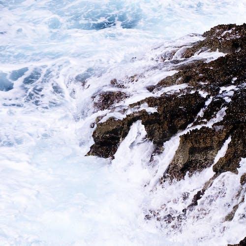 Immagine gratuita di acqua, ambiente, avventura, luce del giorno