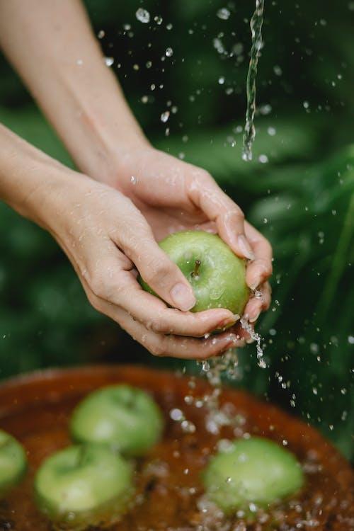 Урожай безликая женщина, моющая зеленые яблоки в саду