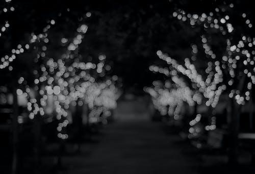 Imagine de stoc gratuită din lumini