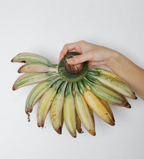 Crop person with hand of bananas
