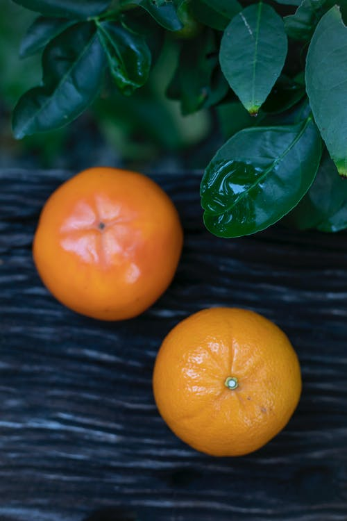 Fresh ripe tangerine and persimmon placed on wooden surface near green leaves