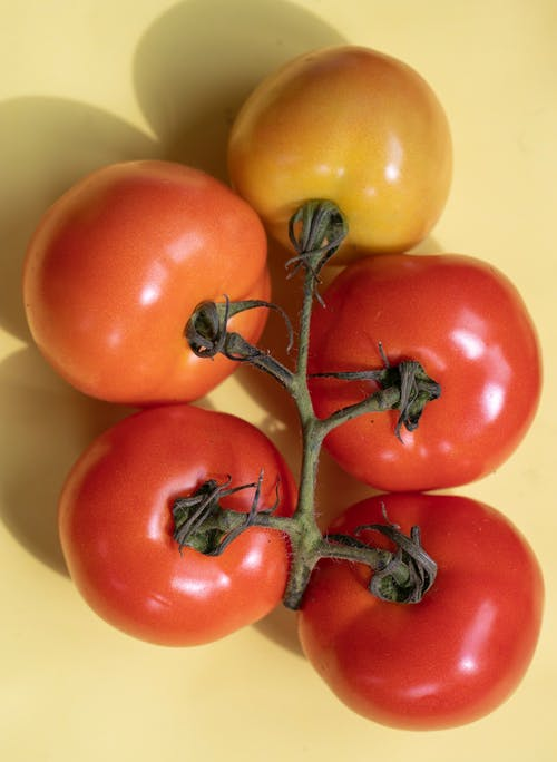 Top view composition of different fresh red and orange tomatoes with green branch with shadow placed on yellow background