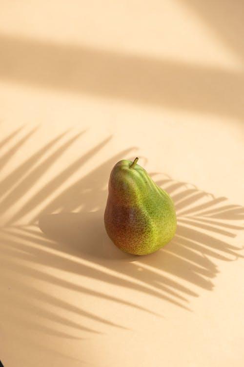 Foto d'estoc gratuïta de angle alt, botànica, branca