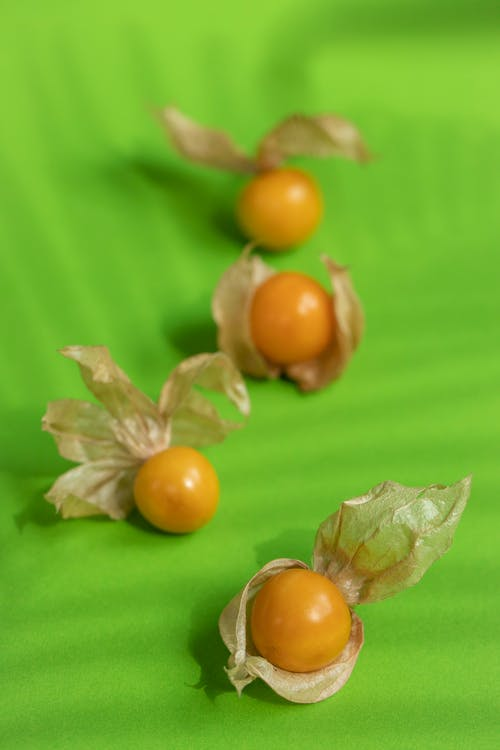 High angle of sweet orange ripe golden strawberries with transparent stems placed on green surface