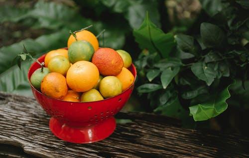 Immagine gratuita di agricoltura, agrume, angolo alto