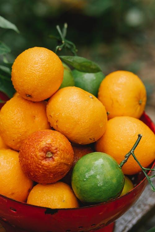 Frutta Arancione Sul Bastone Marrone