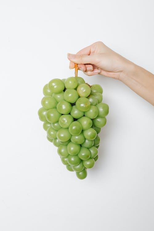 Frutta Rotonda Verde Sulla Mano Delle Persone