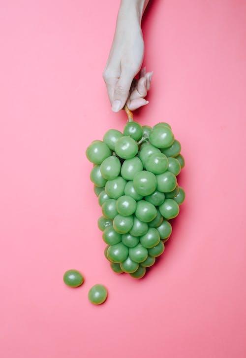 Persona In Possesso Di Frutta Rotonda Verde
