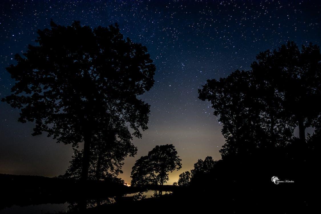 Free stock photo of night, night lights, night photography