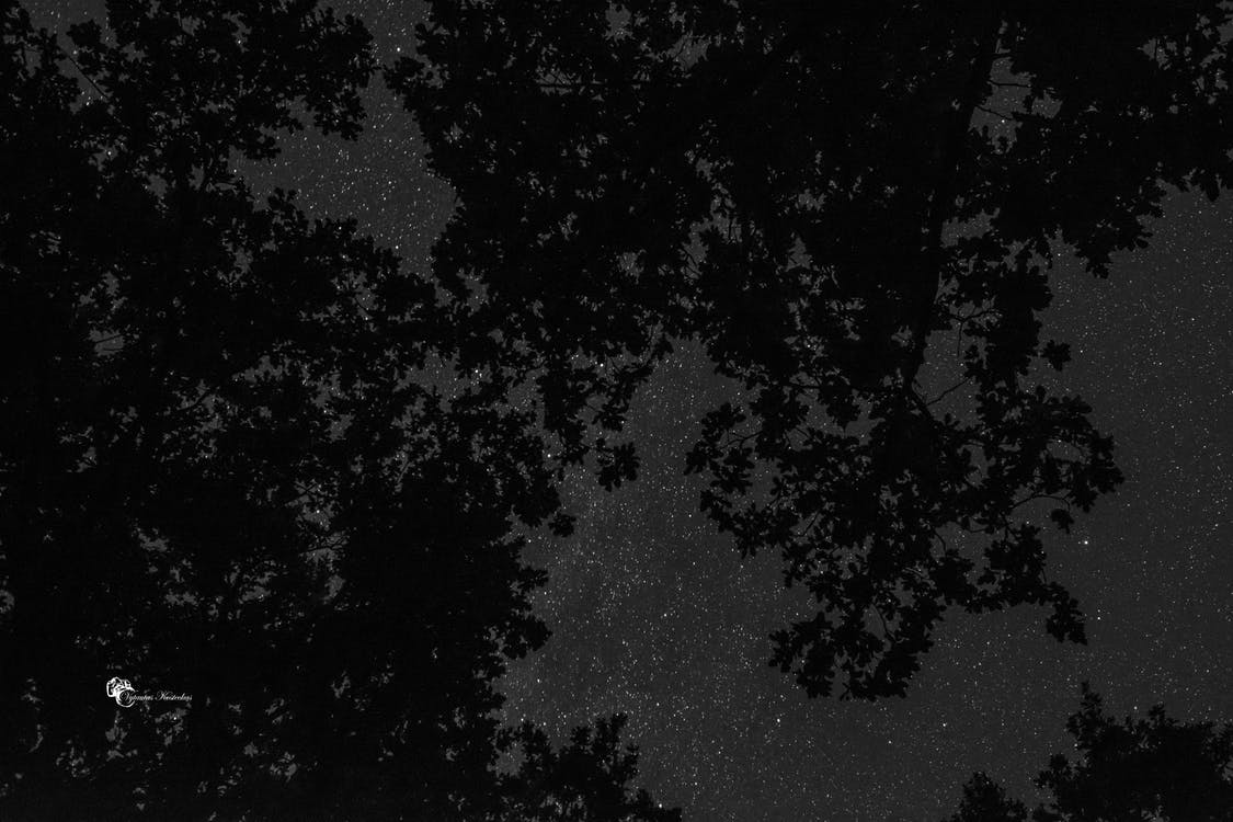 Free stock photo of night photography, night sky, nightscape