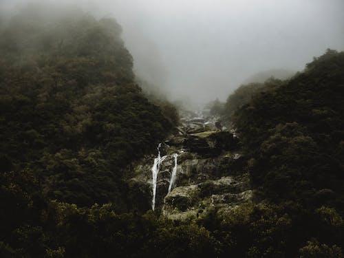 Kostenloses Stock Foto zu bäume, berge, dunstig, düster