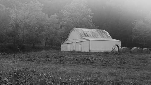 Free stock photo of barn, black-and-white