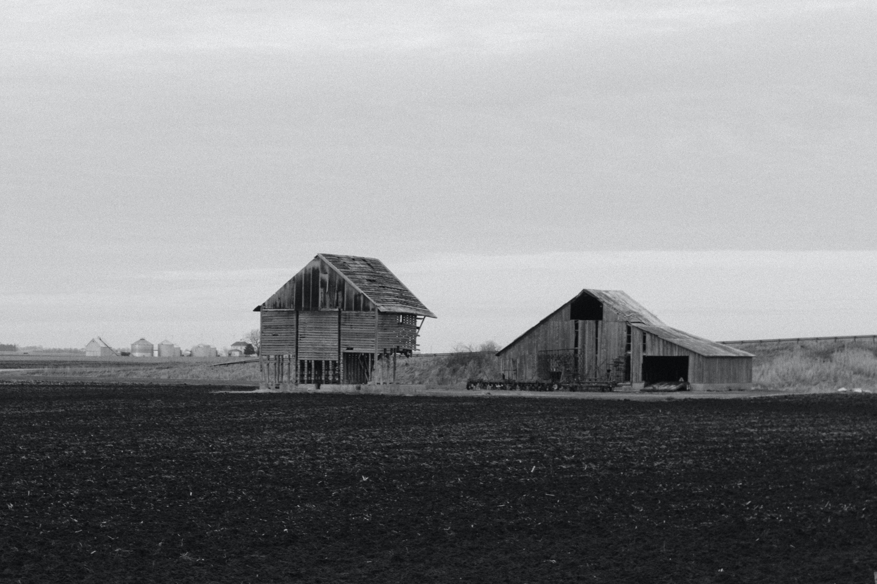 agriculture, barn, black-and-white