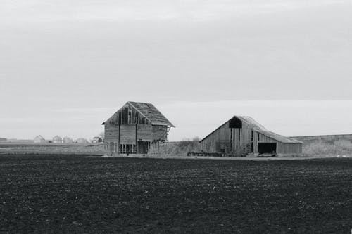 Grayscale Photography of Two Wooden Sheds on Plane