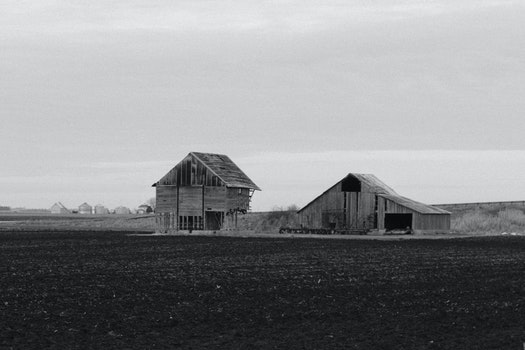 Free stock photo of black-and-white, field, countryside, agriculture